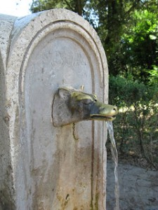 beautiful water drinking fountain